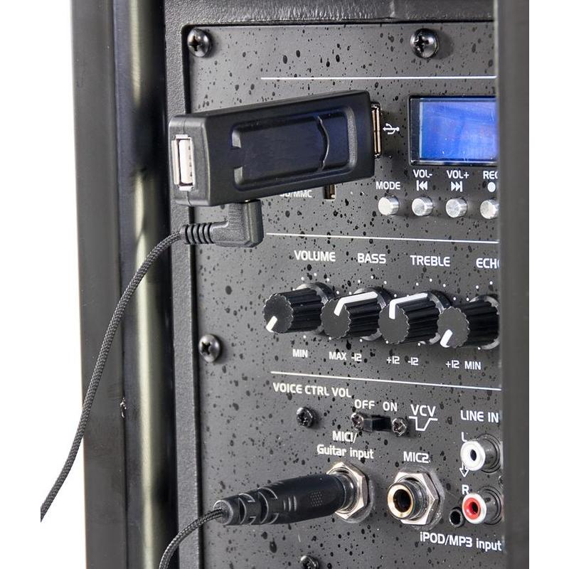 Mike in use (speaker not included) - Wireless UHF Microphone System via USB